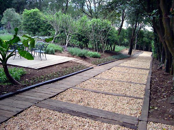 大樹修剪- 移植