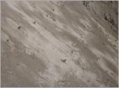 護坡噴漿-04