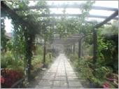 花園噴霧步道