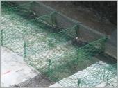 消能網配合石籠