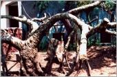GRC仿估樹造型