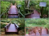木平台、木棧道