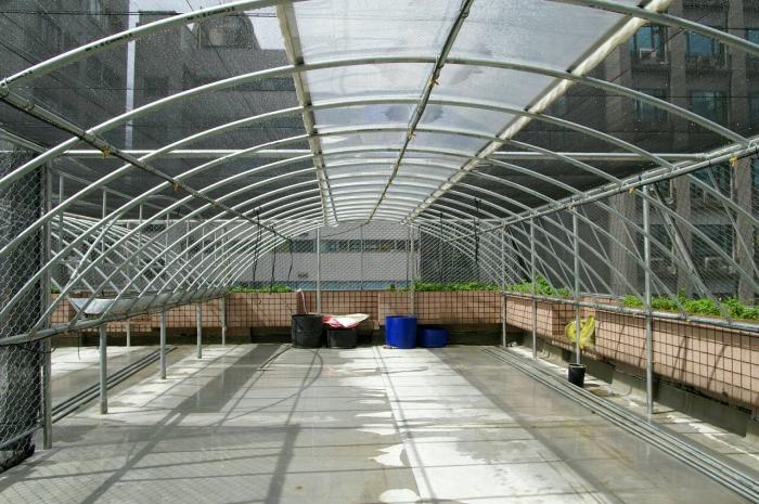 頂樓鋼管蔬果溫室