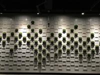 建築物牆面造型框架