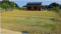 植草磚鋪設--農舍法規