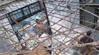 建築物樓板鋼筋拆除