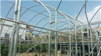 四連棟式溫室鋼管架設工程