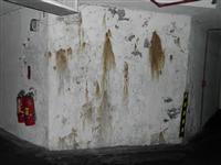 地下室壁癌整治