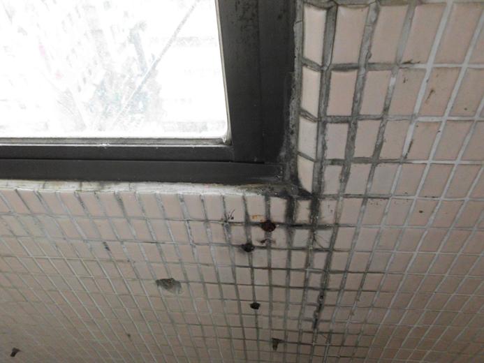 窗框漏水整治