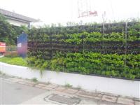 工程圍牆綠化