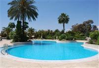 景觀游泳池