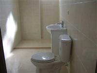 浴室整修/磁磚鋪設