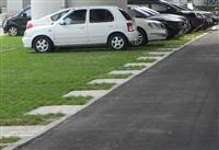 固綠格植草磚