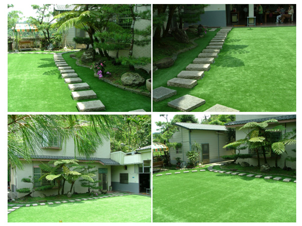 庭園草皮-台中大坑