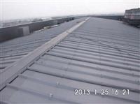 廠房屋頂彩色鋼板