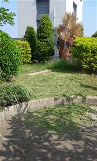 鼎蘆園藝工程 - 庭園維護保護