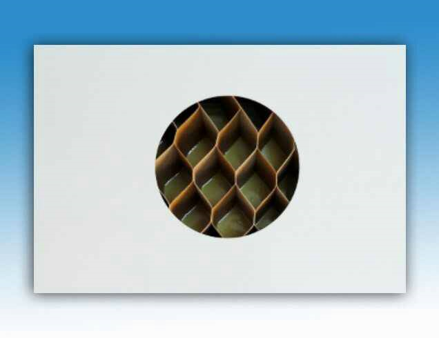 紙蜂巢庫板(綠建材)