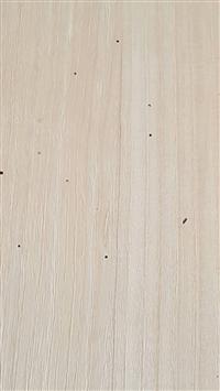 木材蛀蟲處理