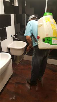 洗手間害蟲處理