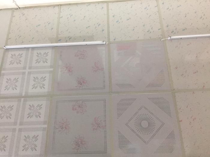 PVC藝術天花板