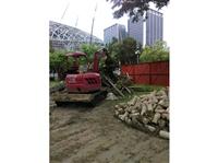 挖土機.怪手出租-新作公園樹木移植