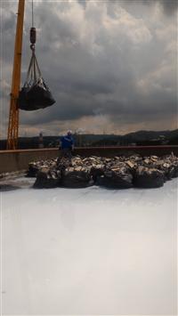 屋頂防水隔熱工程之隔熱磚敲除清運