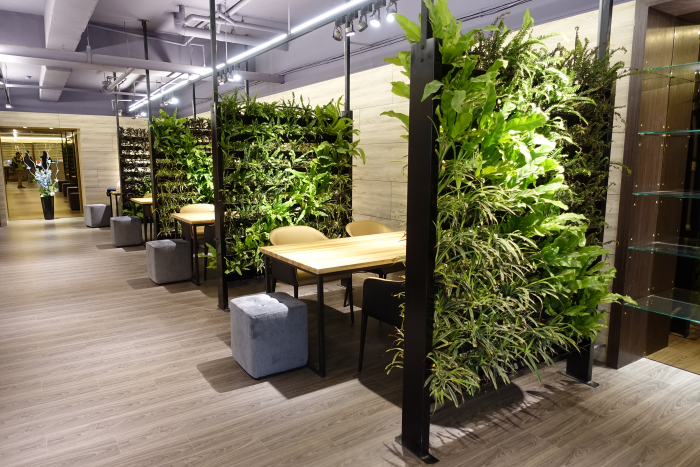 綠牆 設計施工