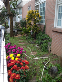 景觀花園設計