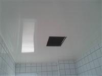 廁所/廚房pvc天花板