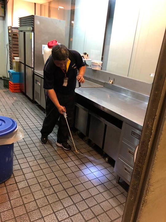 餐廳蟑螂防治