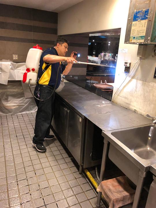 新北市廚房蟑螂防治
