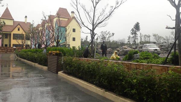 9-綠化造景、庭園造景