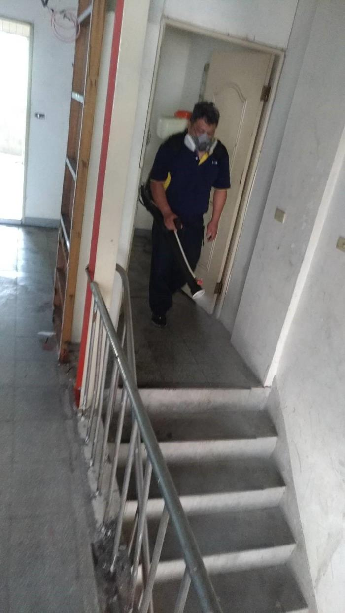 樓梯間跳蚤防治