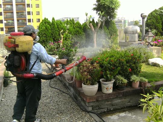 社區中庭花園環境消毒
