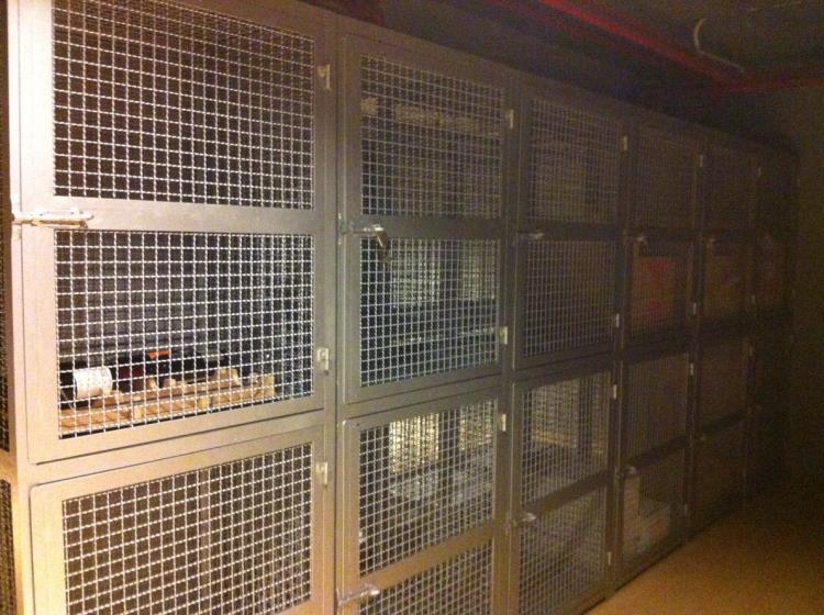 倉儲隔離網