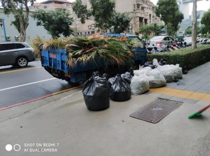 維護後枯葉及枯葉垃圾清運