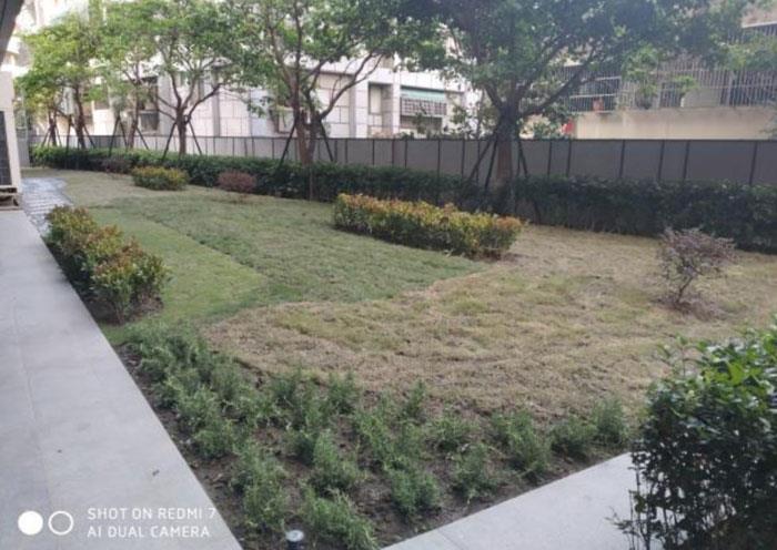花圃景觀改植後