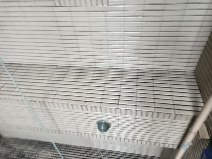 外牆清洗繩索作業-施工後