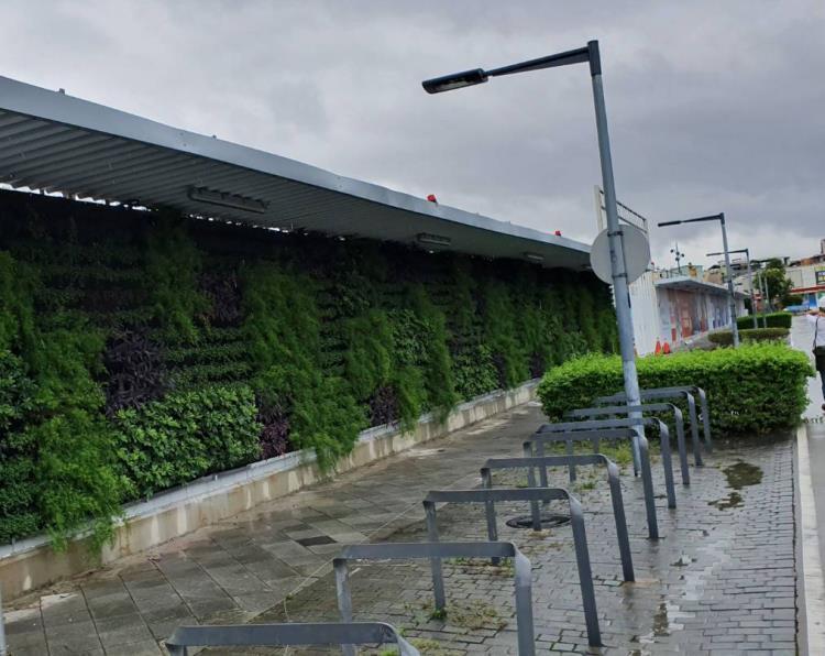 工程綠圍籬