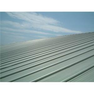 19- 總統府屋頂鋼板工程