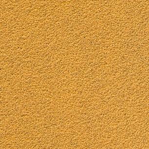 12- GOLD 125mm Grip P240