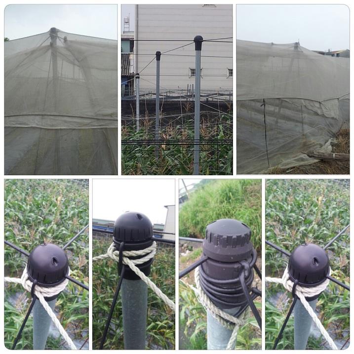 6- DJ-10系列平頂網室固定帽支撐網室屋頂固定結構索