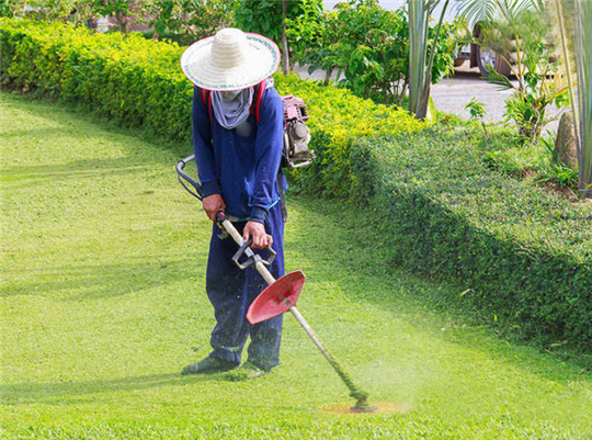人工割草服務