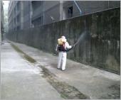 大樓社區環境消毒