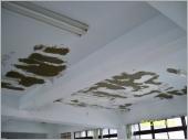 天花板壁癌施工