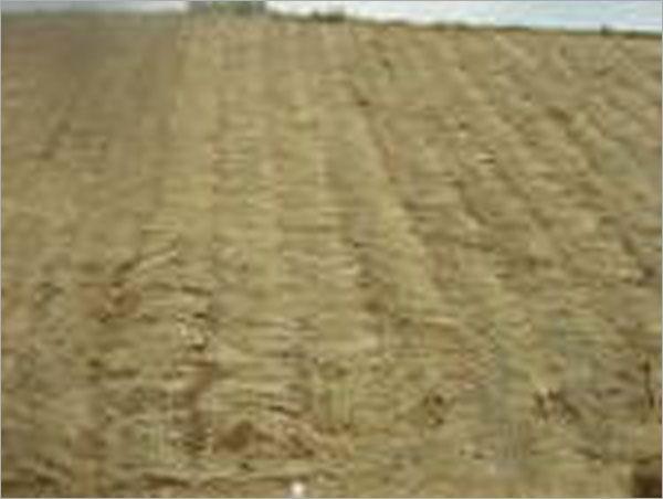 山坡地鋪設稻草完成