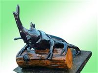 6.仿甲蟲水泥製品