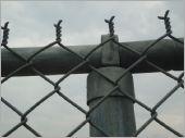 圍籬鋼管環帽