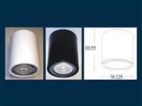 E1031-P38 (吸頂型) LED元寶燈