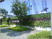 圍籬綠化工程